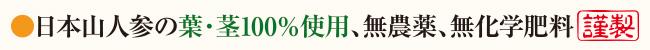 日本山人参の葉・茎100%使用、無農薬、無化学肥料